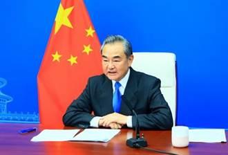 王毅視訊會見聯合國大會主席沙希德 盼為中小國多做實事好事