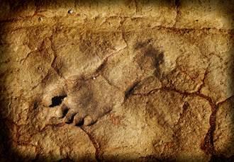 國家公園浮現「幽靈腳印」 科學家驚:2萬年前足跡