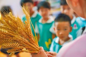 全球1/3糧食被浪費 美中皆大戶