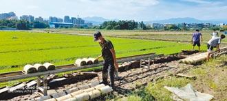 逾3成青農離農 審計處點名檢討