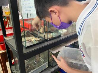 5隻無主寵物爬蟲有家了 成為三重高中生命教育導師