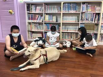 浪浪書僮進駐圖書館 伴讀療癒讀者身心靈