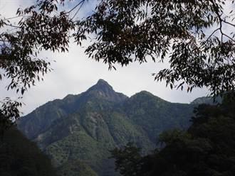 雙十「八仙山森林豐盛季」東勢處力邀共度森林宴