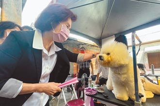 營造友善動物城市 宜蘭萌寵齊聚