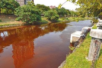 藻類增生染紅愛河 市民嚇一跳