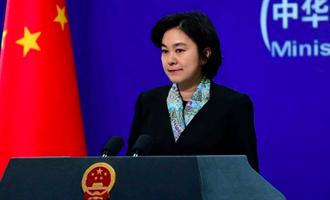 孟晚舟返國後中美領導人G20會晤有望?華春瑩:仍有刺需拔出