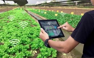 四強聯手 台灣之星擴大布局智慧農業