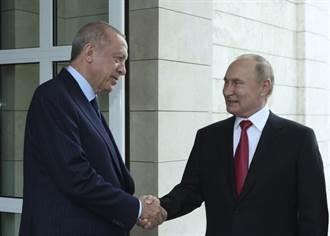 與美國漸行漸遠 艾爾段:擴大與俄羅斯國防合作