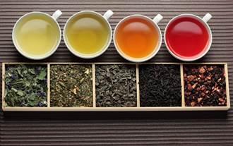 兒茶素防癌抗氧化 營養師秘訣:這樣泡茶能釋出最大量