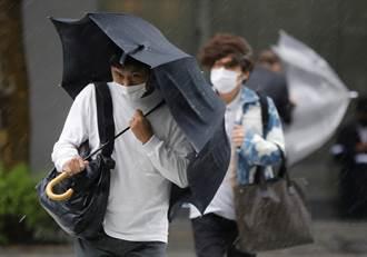 颱風蒲公英威力強  暴風圈可能進入東日本