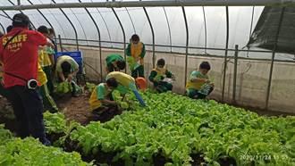桃園推食農戶外教育振興旅遊 4個月有1100班報名