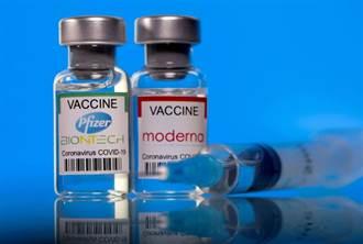 鼓勵民眾接種  巴西研究機構籲全國採用疫苗護照