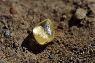 逛公園隨手撿石頭 一驗竟是「4.38克拉黃鑽」秒致富