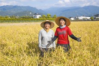 日本當初加入TPP 力保農業5聖域