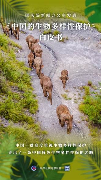 推動生態保護 陸國務院發表《中國的生物多樣性保護》白皮書
