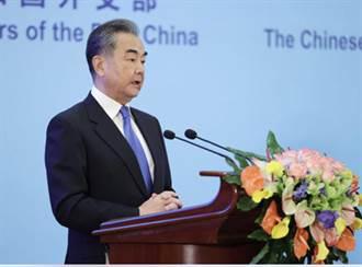 中國、東協建立關係30周年 王毅籲推進南海行為準則磋商