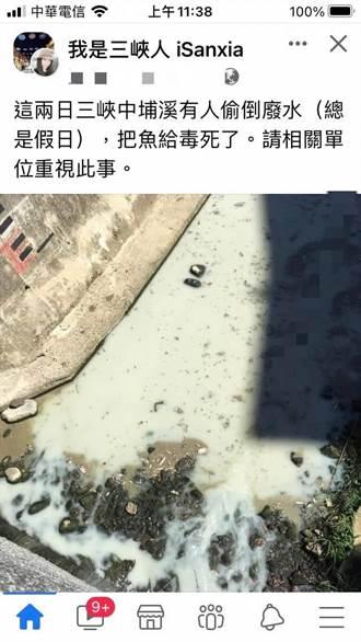三峽中埔溪遭倒廢水毒死魚?環保局:未檢出重金屬污染