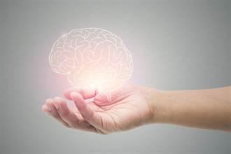 活化腦細胞!10大超級健腦好食物 搶救腦霧健忘症