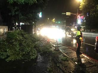 圓規颱風造成路樹傾斜斷裂 龍潭警方漏夜清理交管