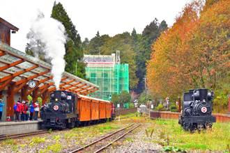 賞楓主題列車來了!攝影達人領路搭國寶蒸汽火車