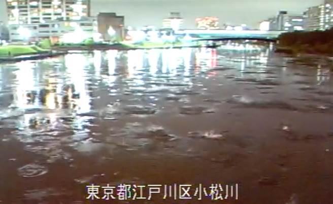 日本先前發生地震時,小松川出現詭異現象,大量魚群躍出水面,過了10秒後,一群鳥因感受到劇烈搖晃而飛過河川。(圖翻攝自推特/國土交通省 荒川下流河川事務所)