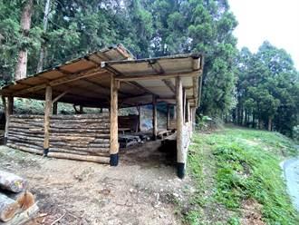 信義雙龍林道新建布農族獵寮 未來開放預約體驗獵人文化
