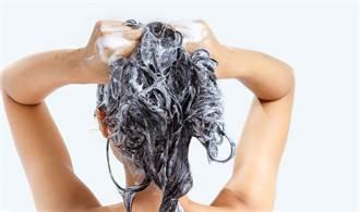 天天洗頭恐釀掉髮危機?食藥署揭關鍵點