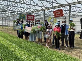 職人帶路社區走讀 農委會邀民眾走訪笨港原鄉