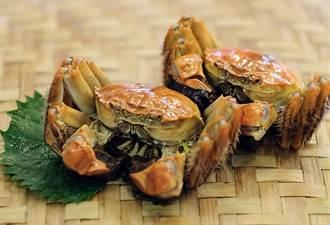 持五倍券嗑大閘蟹加1元多1隻 天成飯店集團翠庭中餐廳品蟹有好康