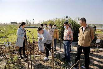 生物防治科學農業 魯臺港澳記者走進黃河三角洲現代農業試驗示範基地