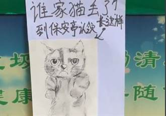 警衛貼走失貓潦草畫像尋主 本尊現身網笑翻:神還原