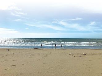 竹縣新月沙灘復育有成 海洋嘉年華回來了