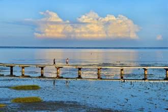 竹市海山漁港小旅行體驗生態、認識魚獲 30日起登場