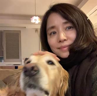 石田百合子愛毛孩 為這原因不上動物綜藝節目