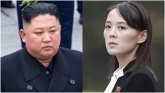 外媒爆金正恩遭金與正「殺兄奪位」 韓國情報局回應了