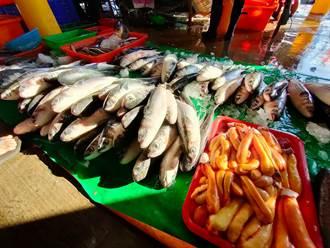 彰化風場航道管制捕魚今上路 漁民怒了:遭開罰就北上抗議