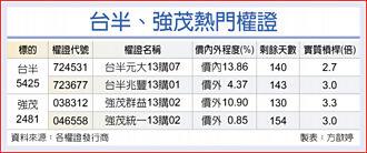 台灣權王-車用需求旺 台半強茂錢景亮