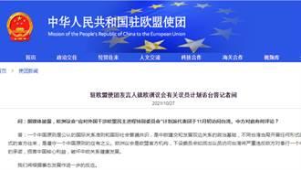 歐洲議會議員擬下月初訪台 大陸駐歐盟使團:違反一個中國政策