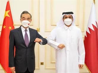 王毅與卡達副首相會談 讚賞雙方戰略夥伴關係